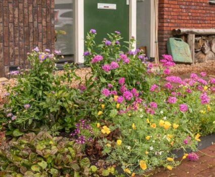 Heeft jouw tuin al wormen en micro-organismen?